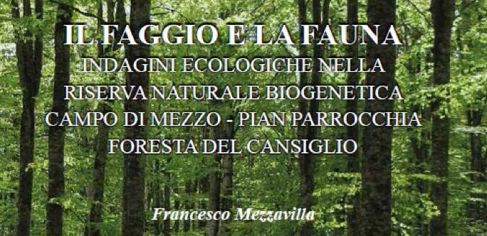 faggio_cut